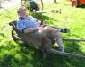 Dreschfest Gahlen-2008-5