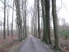 buchenallee-25-02-08